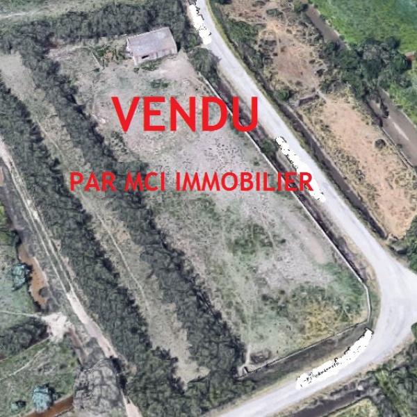 Offres de vente Terrain Mauguio 34130